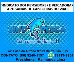 SINDPESCA 300 X 250 01