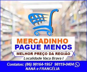 MERCADINHO PAGUE MENOS 300X250 01