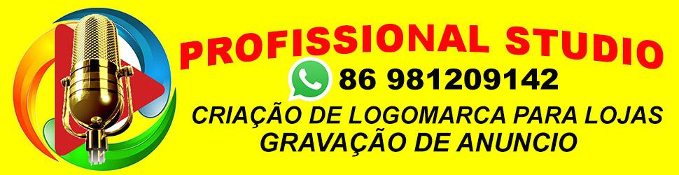 PROFISSIONAL STUDIO 970X250